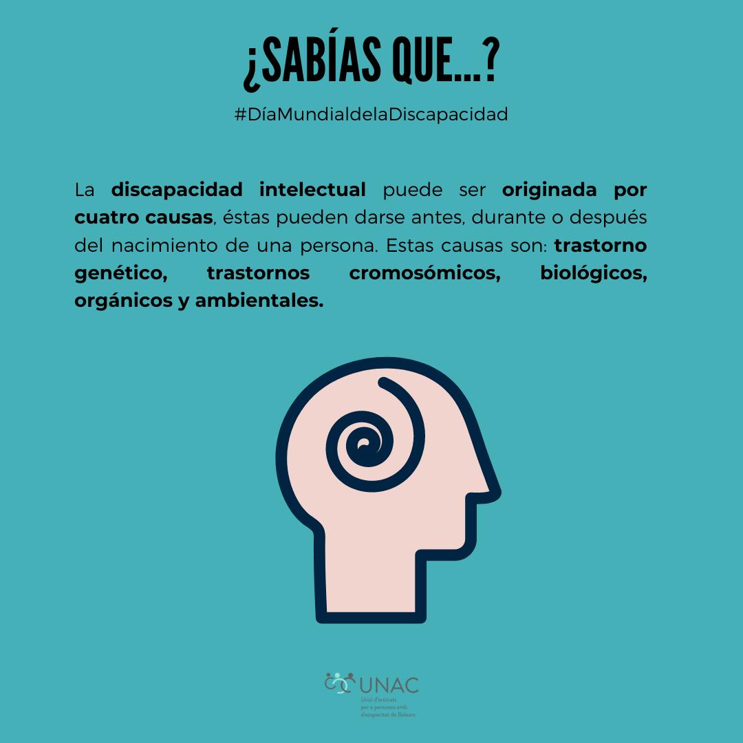 discapacidad intelesctual - UNCA -JOANXXIII